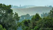 Blick auf die Hügelkette