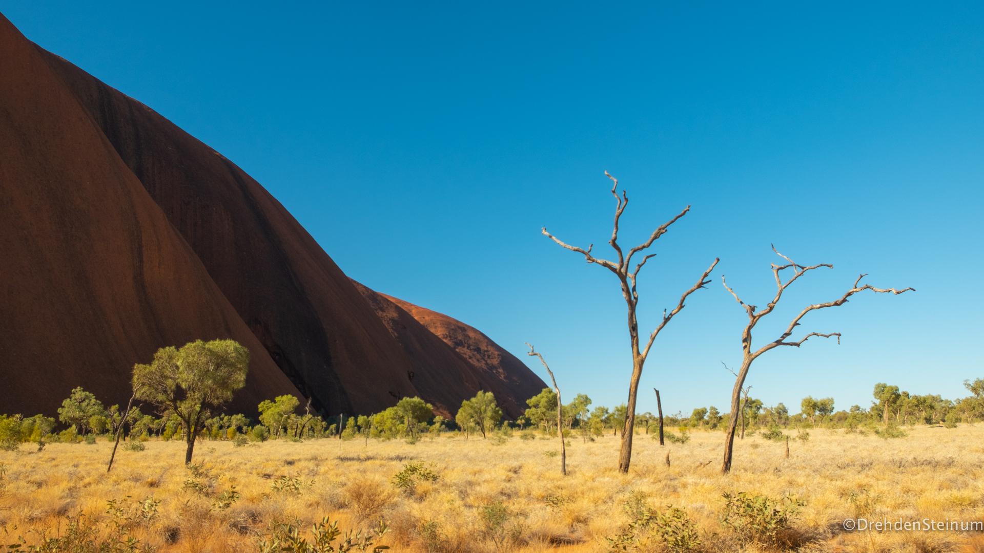 Outback Tour – Uluru und Kata Tjuta