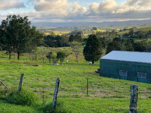 Atherton Tablelands – Queenslands grünes Hinterland
